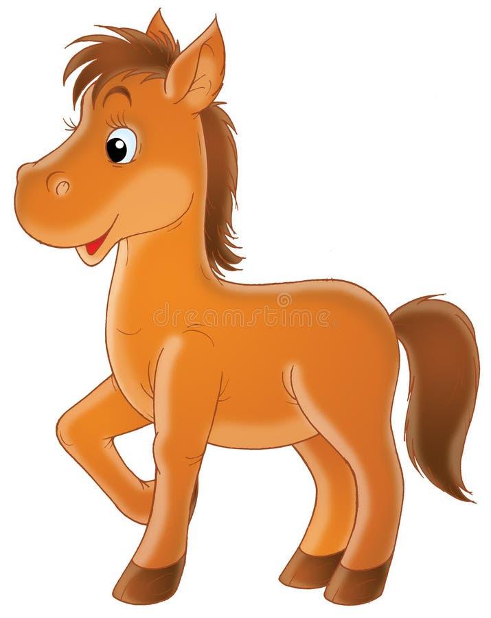 Foal del Brown royalty illustrazione gratis