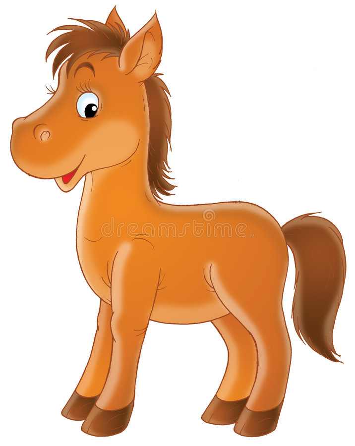 Foal del Brown