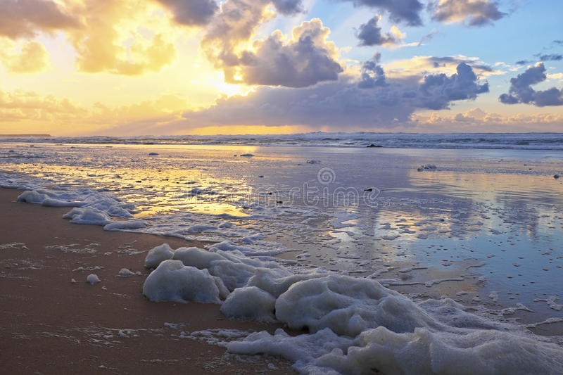 Foam at the beach at sunset