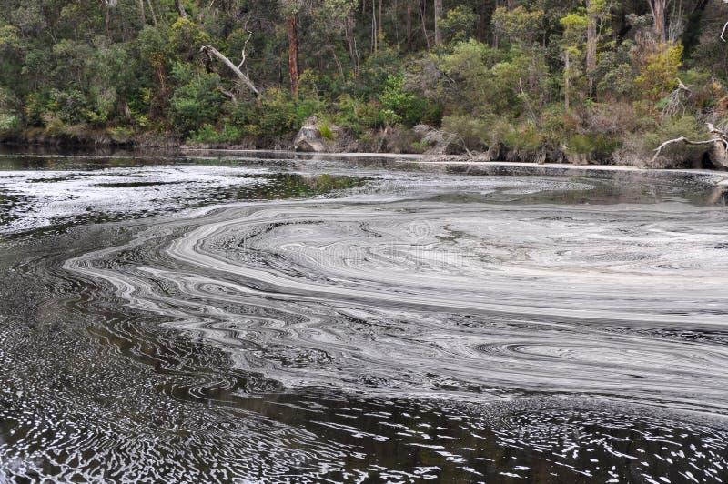Foamy κυκλικές λίμνες: Ποταμός Frankland, δυτική Αυστραλία στοκ εικόνα με δικαίωμα ελεύθερης χρήσης