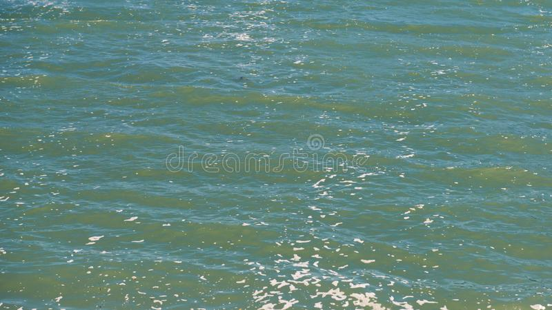 Foamy, κυματιστό θαλάσσιο νερό, κάτω από το φως του ήλιου στοκ εικόνες με δικαίωμα ελεύθερης χρήσης