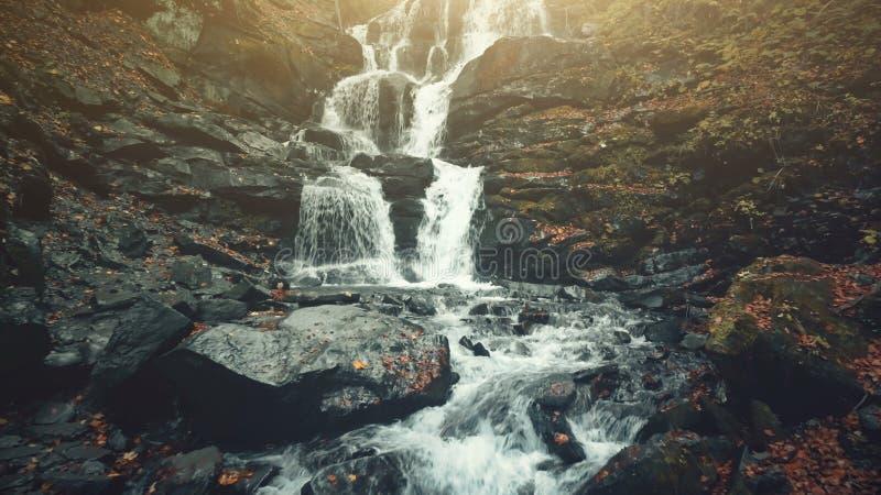 Foamy ρεύμα καταρρακτών κλίσεων δασονομίας ορεινών περιοχών στοκ εικόνες με δικαίωμα ελεύθερης χρήσης