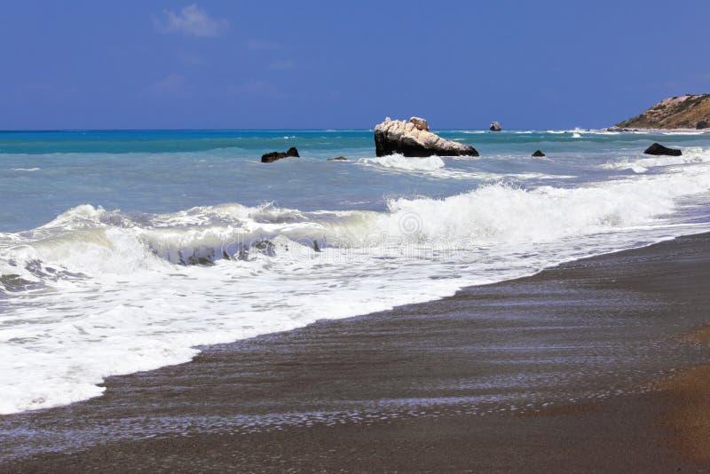 foamy flottawaves för kust royaltyfri bild