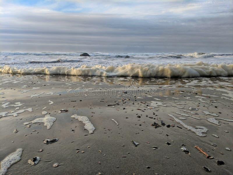 foamy hav arkivbilder