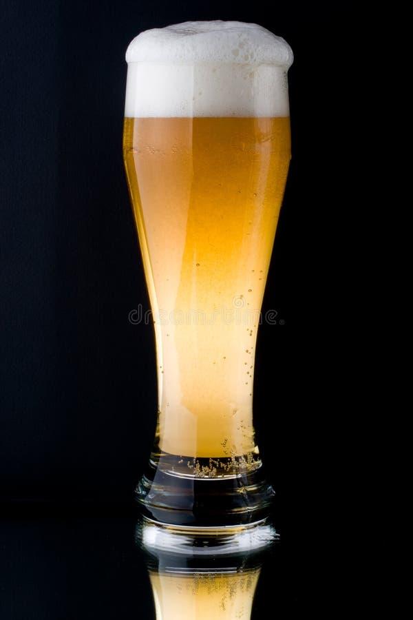 foamy nytt för öl fotografering för bildbyråer