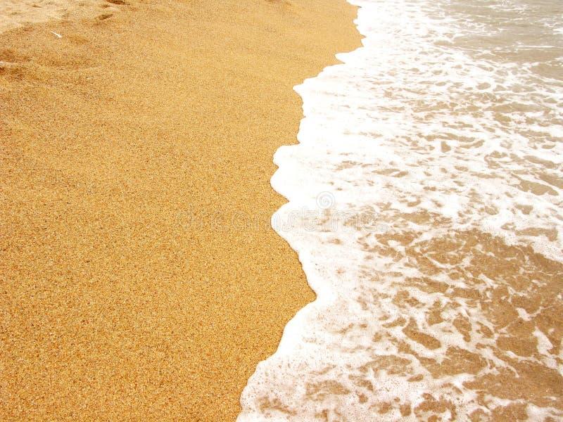 Foamy sea shore royalty free stock photography