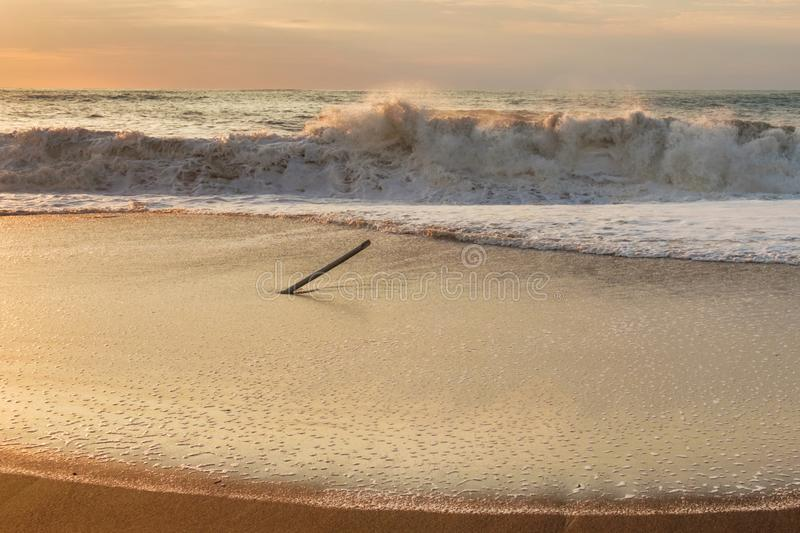 Foamy wave. At the sunset sandy beach stock image