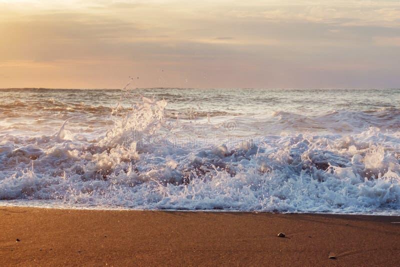 Foamy wave. At the sunset sandy beach stock photos