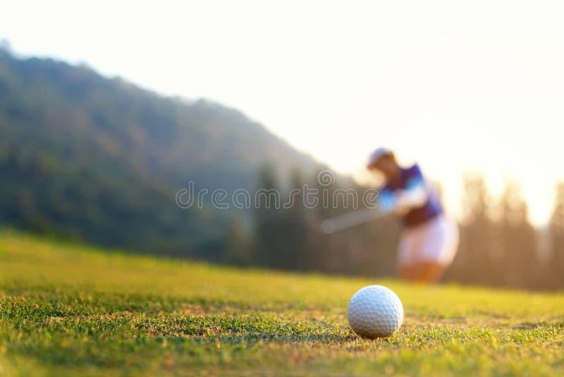 Foco asiático de la mujer del golfista que pone la pelota de golf en el golf verde en tiempo determinado de la tarde del sol imágenes de archivo libres de regalías