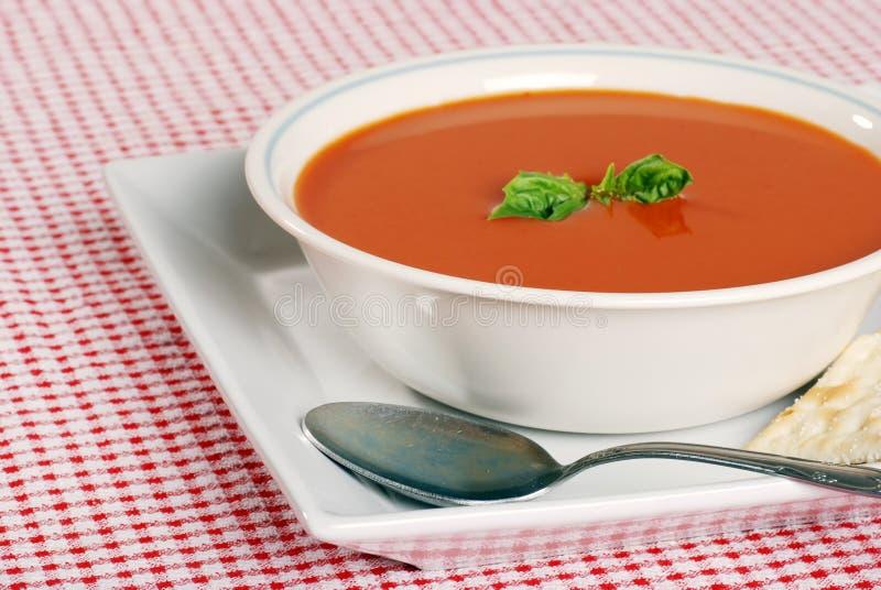 Foco da sopa do tomate na borda dianteira da bacia fotografia de stock