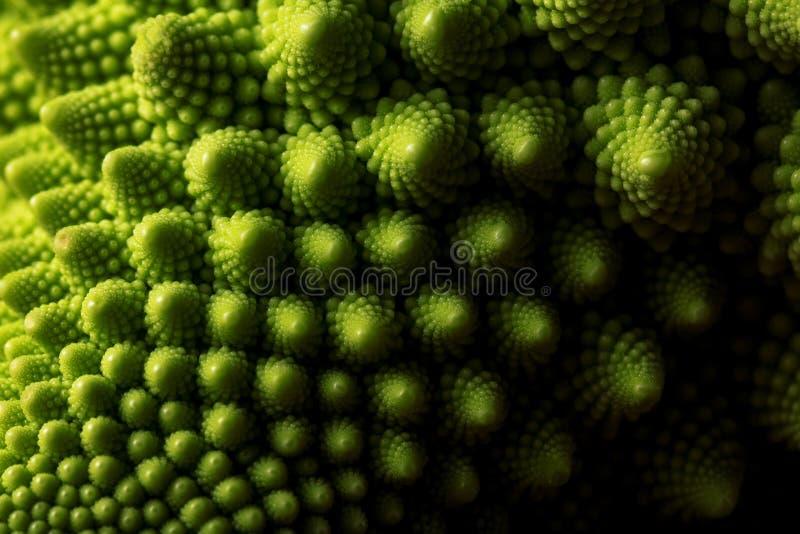 Foco macro de la col fresca del romanesco, selectivo vegetal fotografía de archivo
