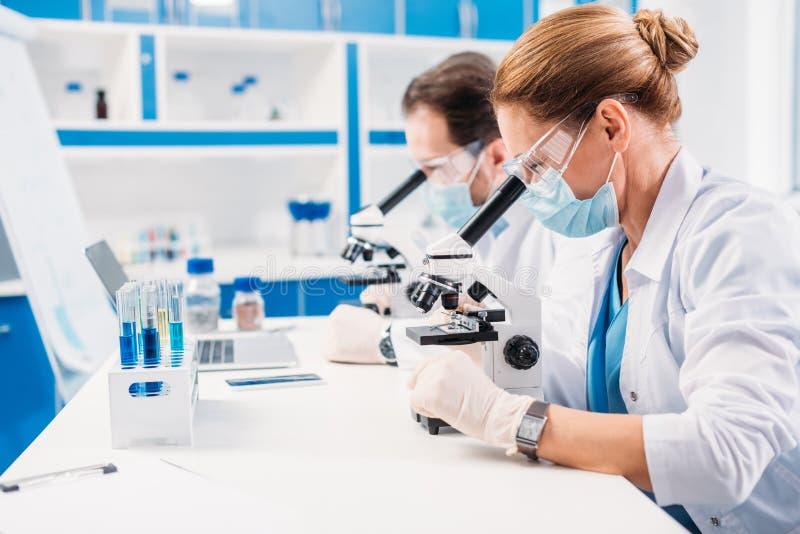 foco seletivo dos cientistas em máscaras médicas e dos óculos de proteção que olham através dos microscópios em regentes fotografia de stock