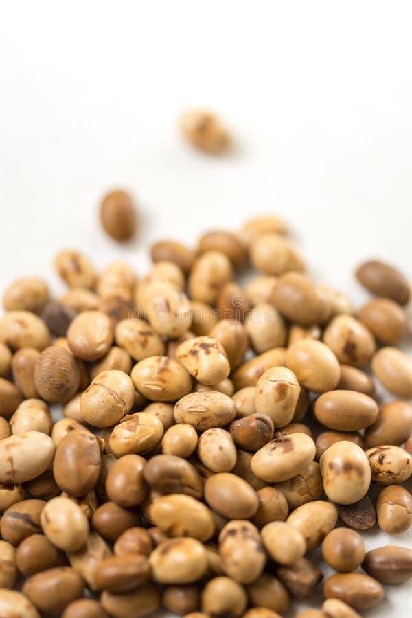 Foco seletivo em grãos de soja na tabela de mármore branca do fundo foto de stock royalty free