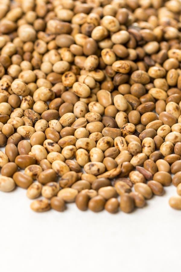 Foco seletivo na pilha de grãos de soja no fundo de mármore branco imagens de stock