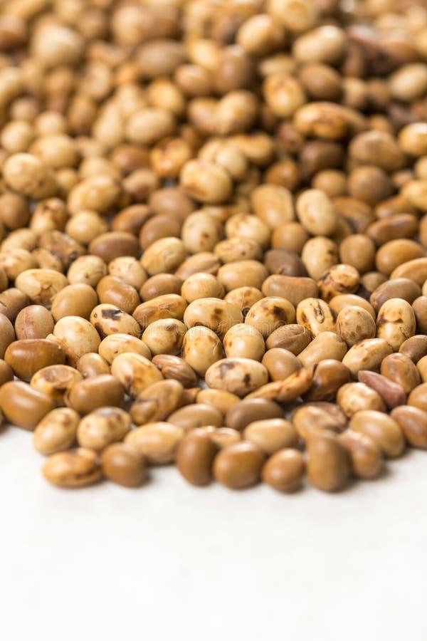 Foco seletivo na pilha de grãos de soja no fundo de mármore branco fotos de stock