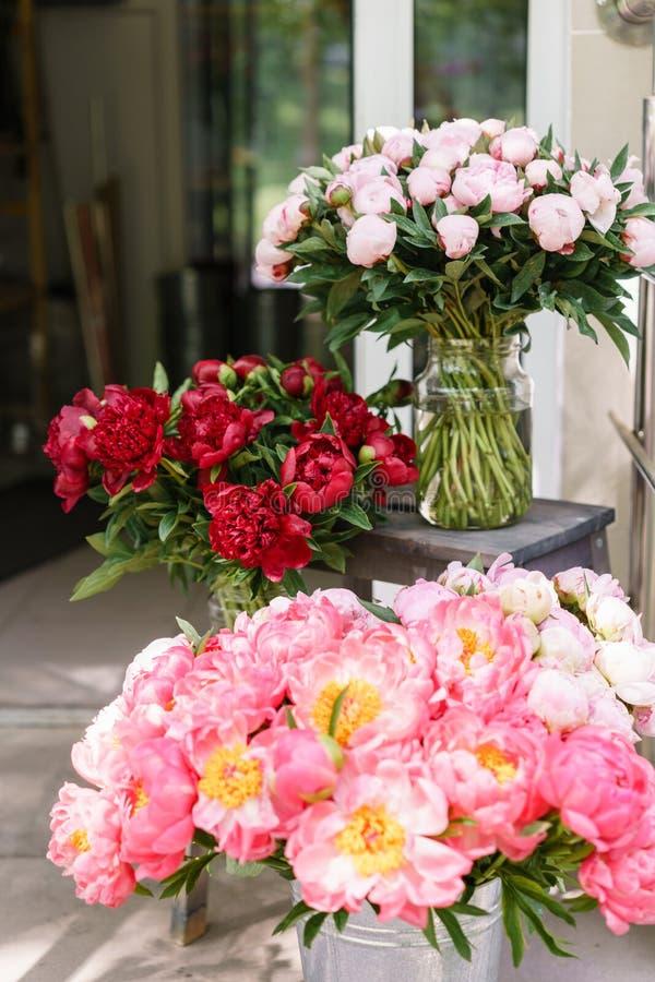 Focun na czerwieni Uroczy kwiaty w szklanej wazie Piękny bukiet peonia koralowy urok poniekąd Kwiecisty skład, scena zdjęcie stock