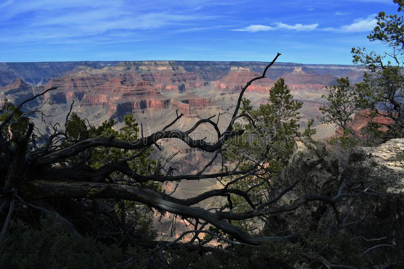 Focus attention on beauty of grand canyon. Views royalty free stock photo