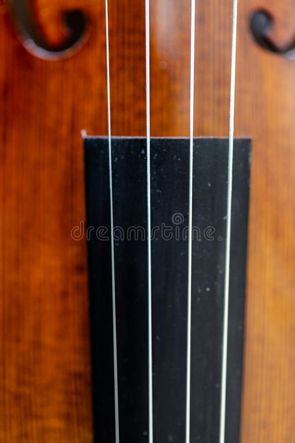 Focus on violin strings over fingerboard body belly royalty free stock photography