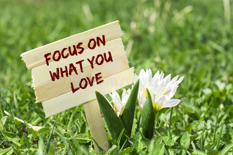 Focus on what you love royalty free stock photo