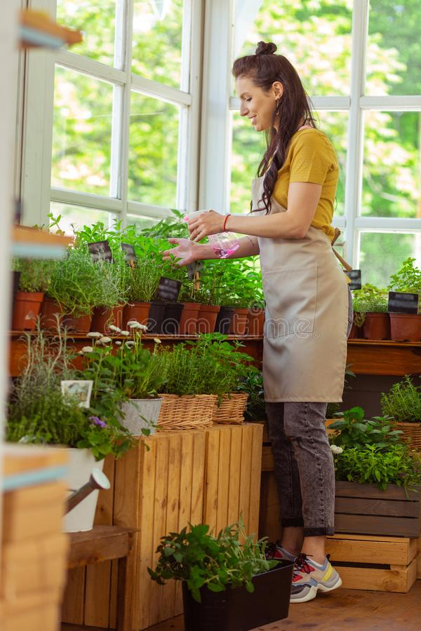 Focused florist carefully sprinkling flowers and smiling. Involved in work. Beautiful focused florist carefully sprinkling flowers and smiling standing on royalty free stock images