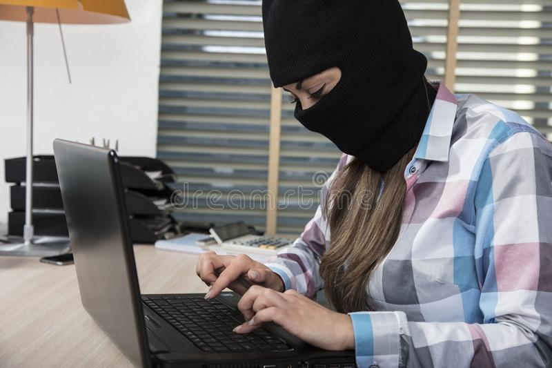 Focused hacker working on a computer, stealing data stock images