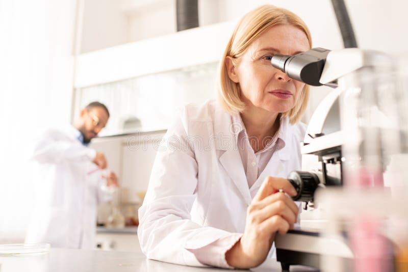 Focused lady adjusting microscope. Focused mature lady with blond hair adjusting microscope while enlarging image of sample in laboratory royalty free stock photography