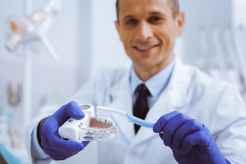 Focused photo on male hands that holding model of teeth. Good example. Attractive stomatologist keeping smile on his face while showing masterclass royalty free stock image