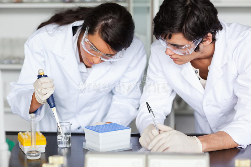 Download Focused Science Students Making An Experiment Stock Image - Image: 21147175