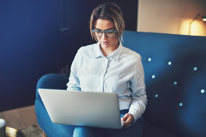 Focused young businesswoman sitting on a sofa working online royalty free stock photos