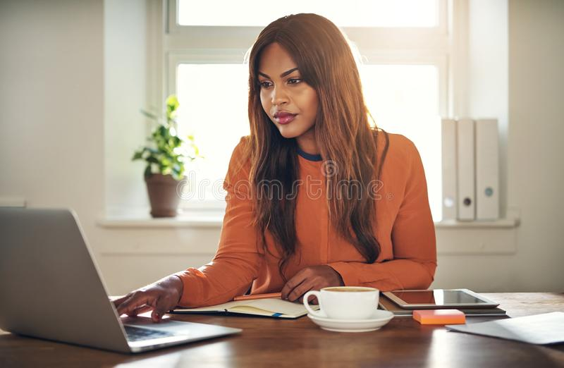 Focused young entrepreneur hard at work in her home office stock photo