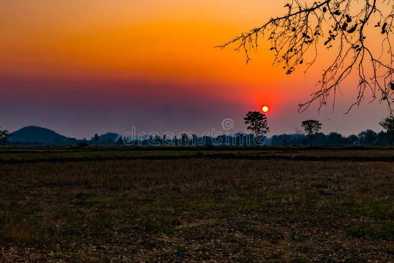 Focusthe-Sonne und weiche Tone Filter: Sonnenuntergang über Reisfeld lizenzfreie stockfotografie