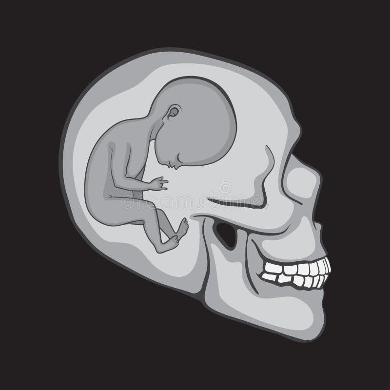 Foetus binnen Schedels stock illustratie