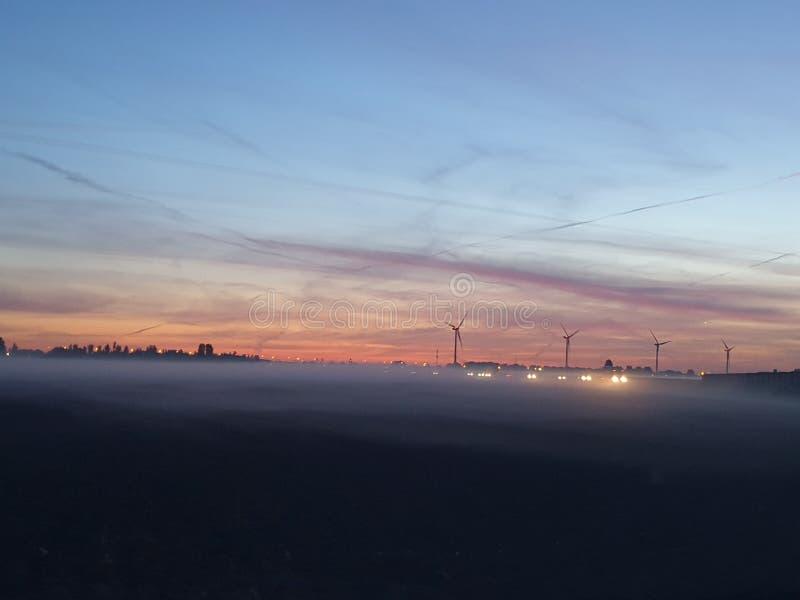 Fog över ängarna under soluppgången i Zuidplaspolder i Zevenhuizen Nederländerna royaltyfri foto