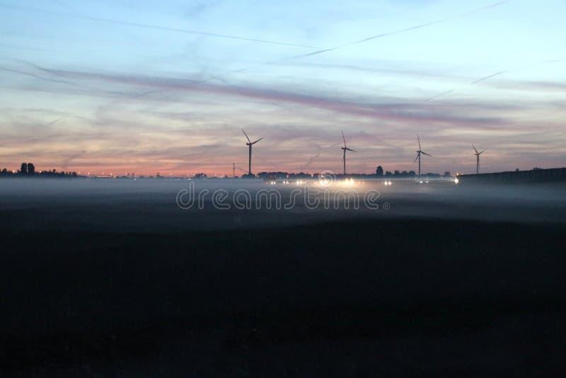 Fog över ängarna under soluppgången i Zuidplaspolder i Zevenhuizen Nederländerna royaltyfria bilder