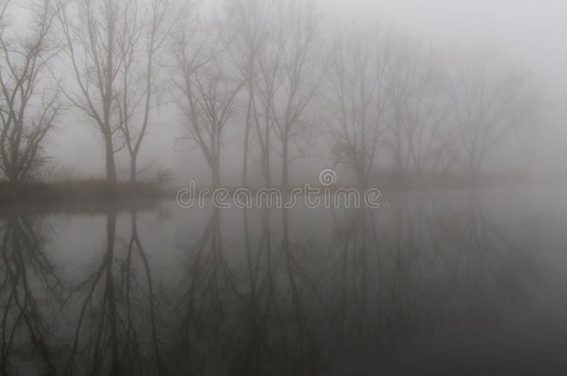 The Fog Free Public Domain Cc0 Image