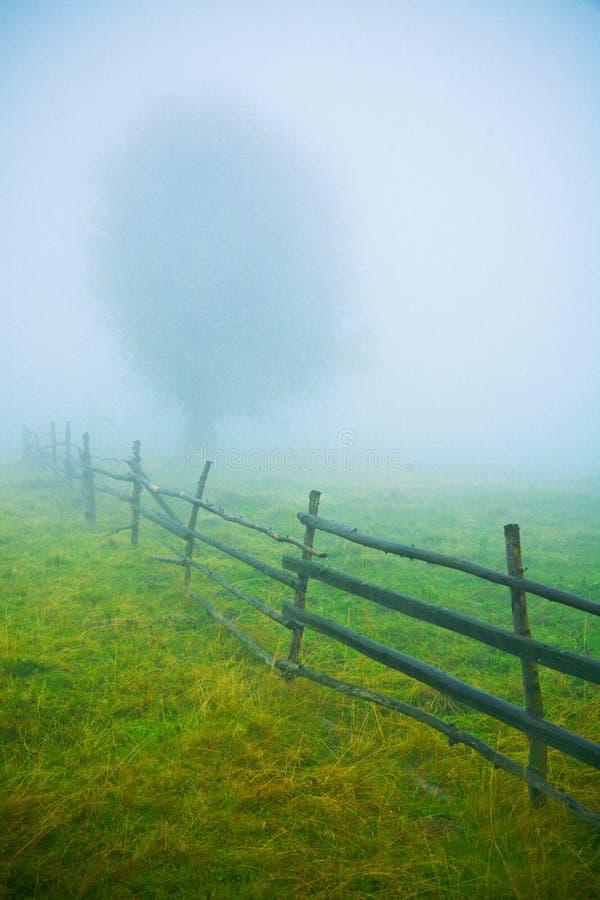 Fog Royalty Free Stock Photos
