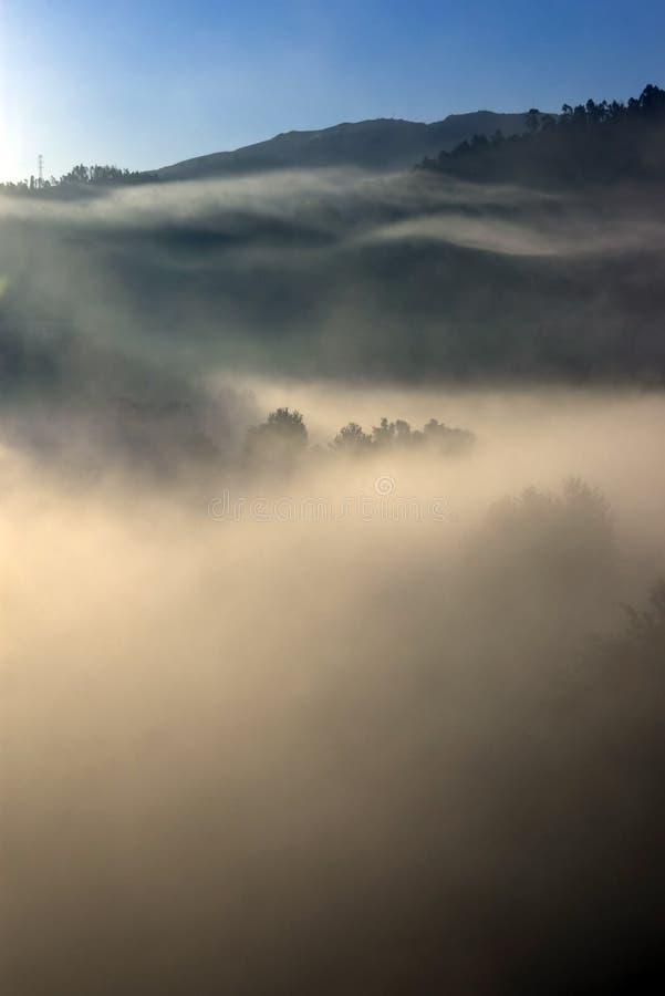 Free Fog Stock Images - 3579714