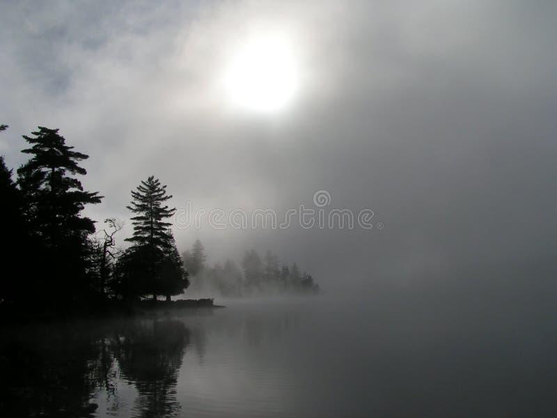 Fog royalty free stock photo