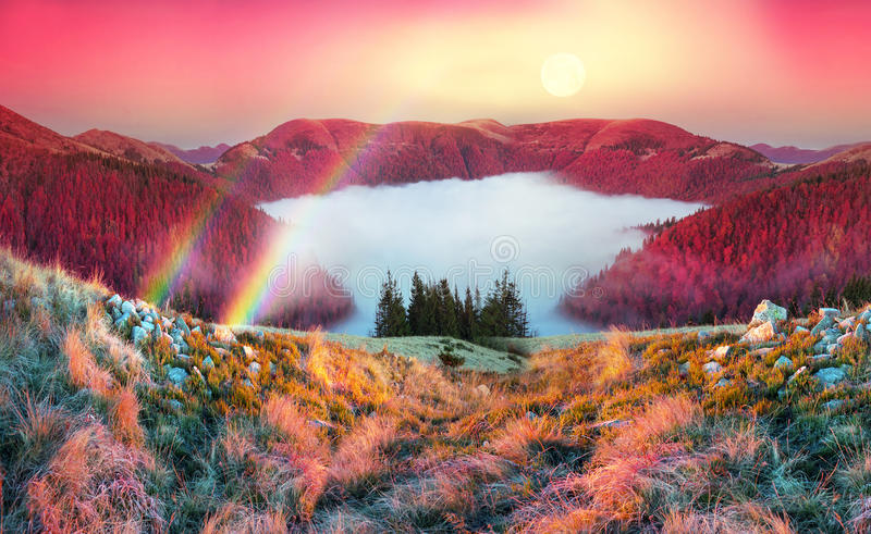 Fog in the autumn. In the Carpathians, golden autumn cold often turns into snow then again come warm sunny days. Against the background of high mountain ranges royalty free stock image