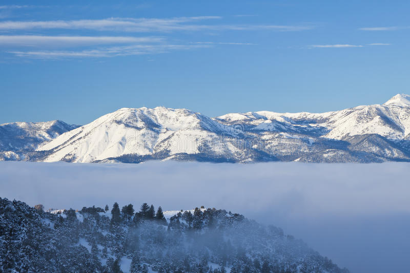 Fog Bank In The Sierras Stock Image