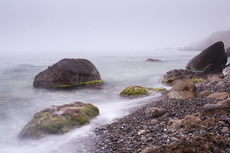 Fog coast stock images