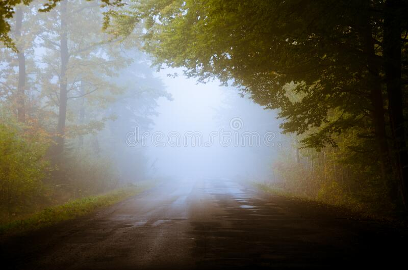 Fog on country road royalty free stock photo