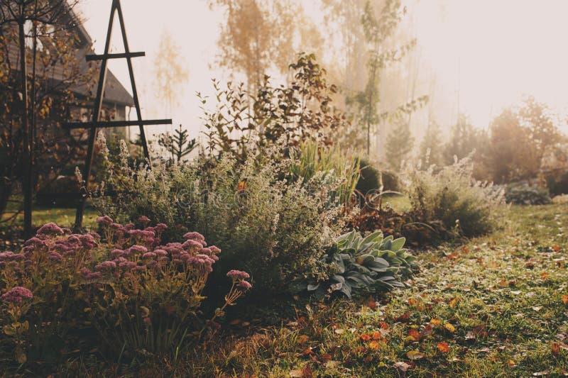Fog in early morning in late autumn or winter garden. stock photos