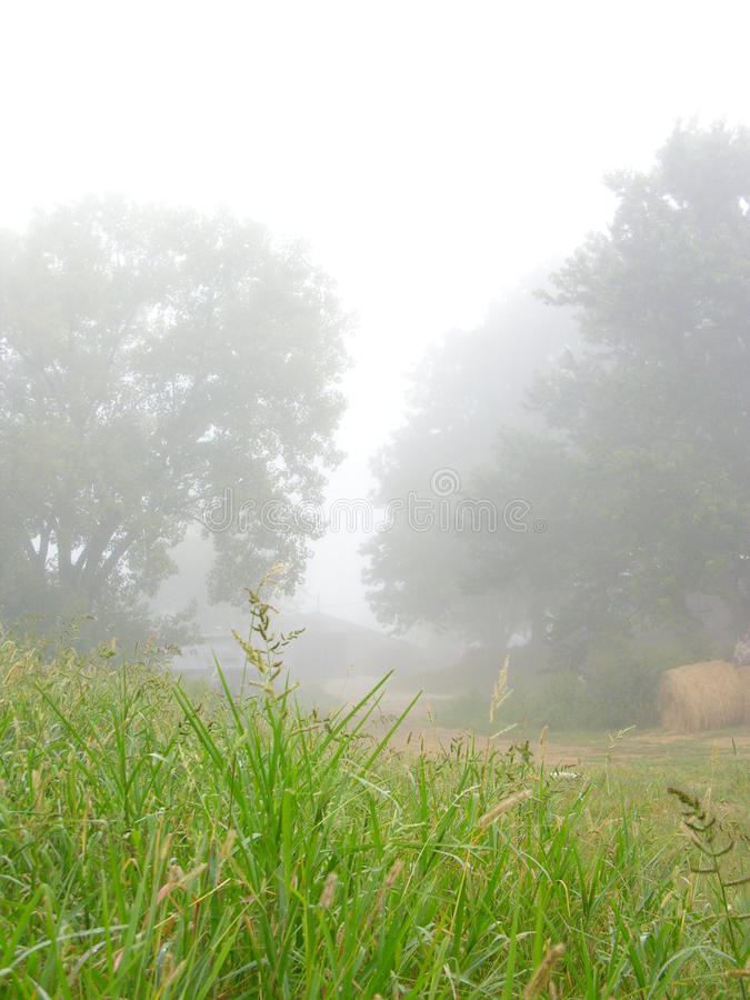 Fog on the farm royalty free stock image