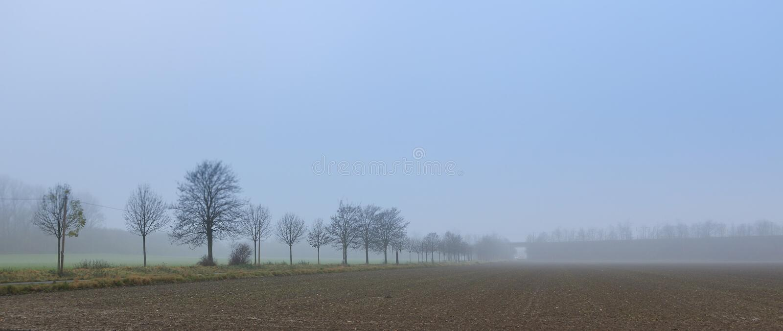Fog on the field royalty free stock photography