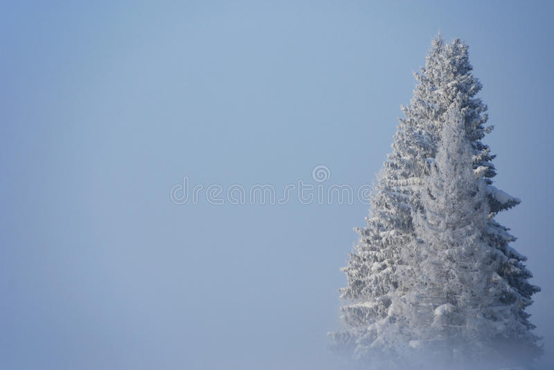 Freezing winter day. Extremely cold winter day with a fog stock images