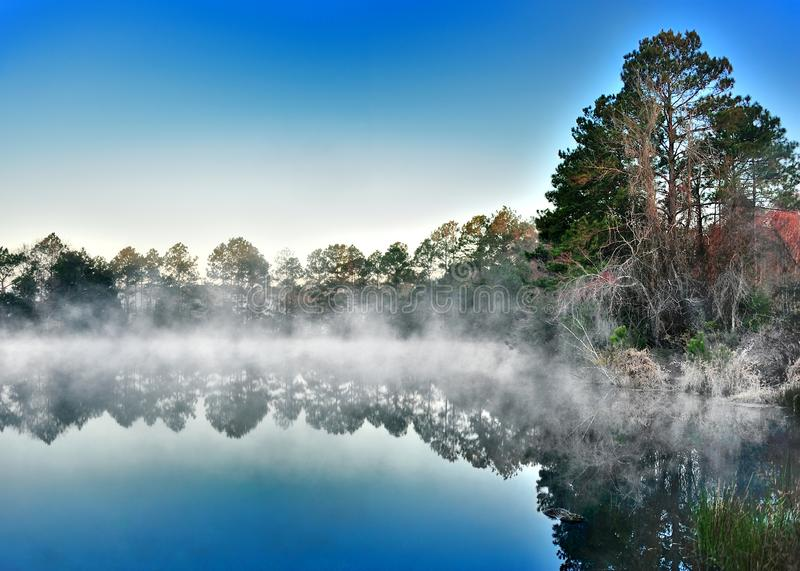 The Fog Freezing. On the vegetation after rising from the pond stock images