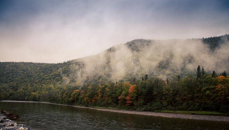 Fog on gaspe Quebec. Fog in the morning in gaspe Quebec royalty free stock photography