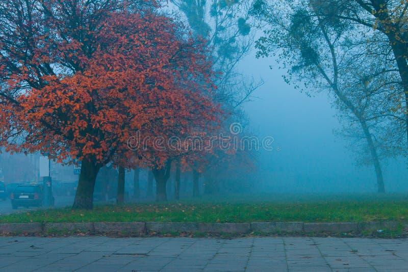 Fog in Gdansk city stock photography