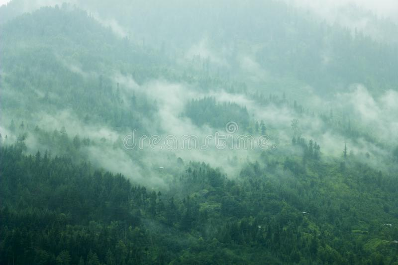 A fog in the green slope mountains royalty free stock photo